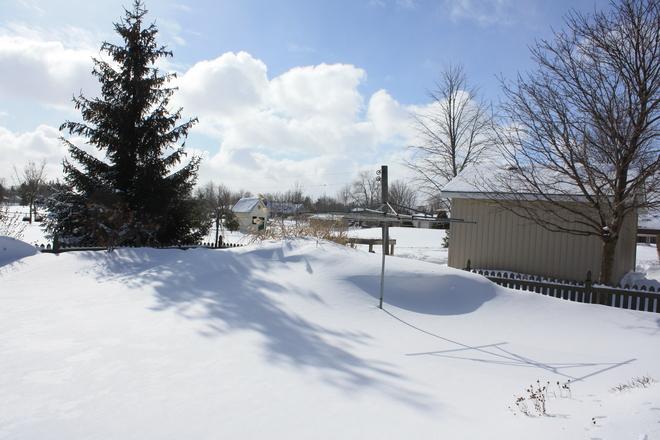 snowdrift Innerkip, Ontario Canada