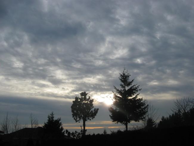 hmmmmmm... Surrey, British Columbia Canada