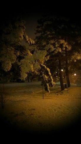Winter wonderland Mississauga, Ontario Canada