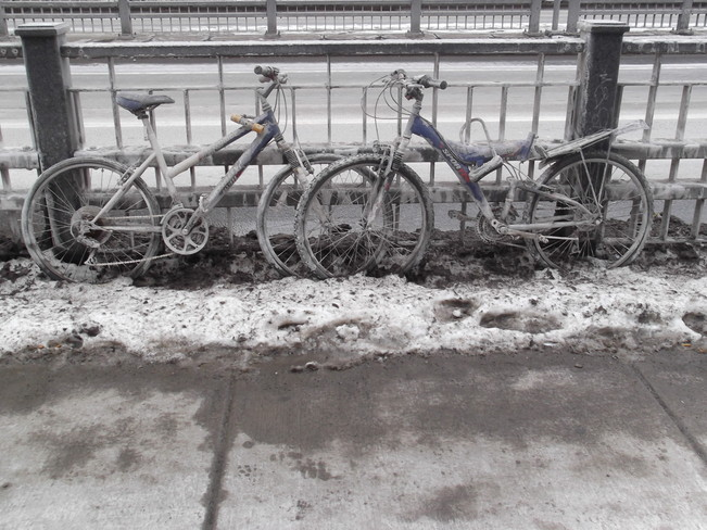 Salted bikes Ottawa, Ontario Canada