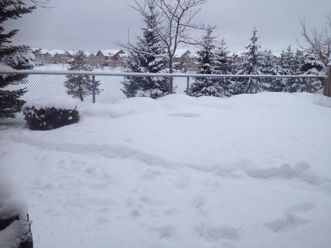 alot of snow Markham, Ontario Canada