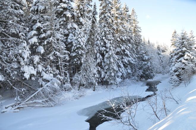 Snowy Morning Hartland, New Brunswick Canada
