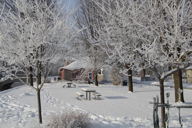 Beautiful Winter Day Guelph, Ontario Canada