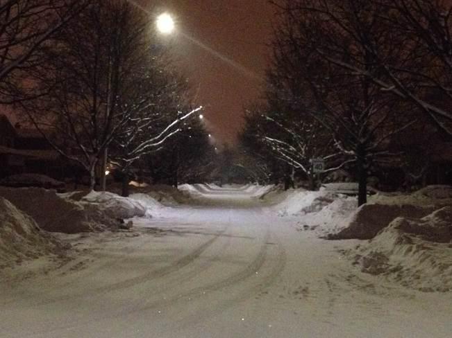 Snowy Bliss Markham, Ontario Canada