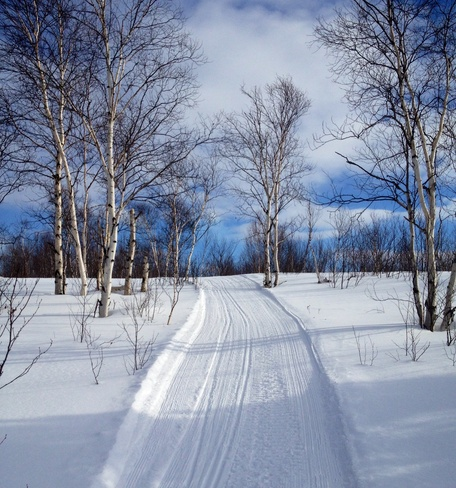 winter trail Bailey Corners, Ontario Canada