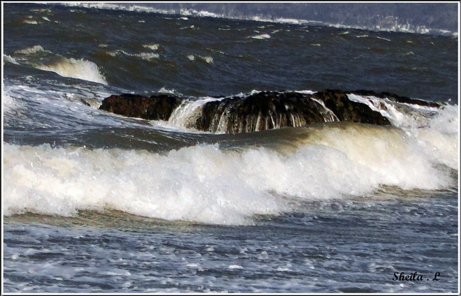 Winter Waves Canning, Nova Scotia Canada