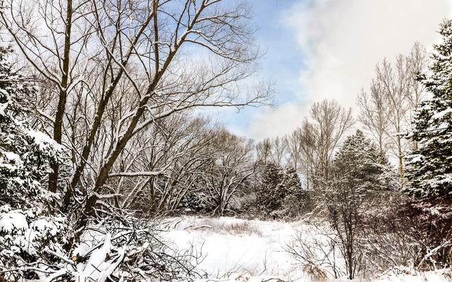 winter scenery Stratford, Ontario Canada