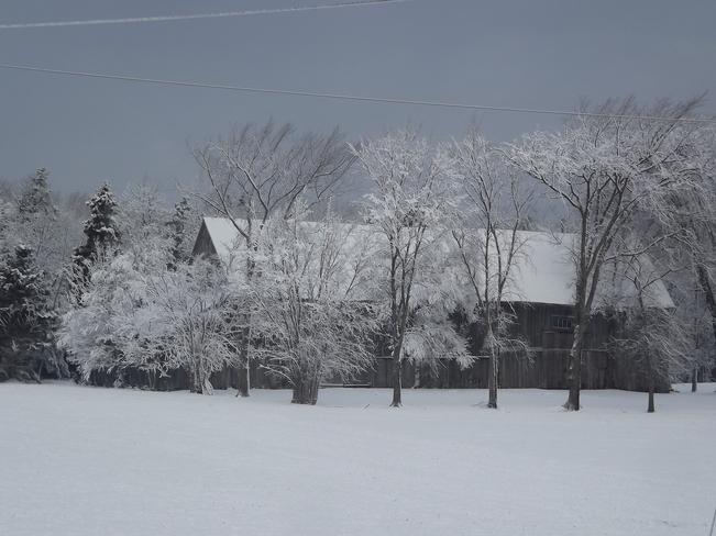 so peaceful Tatamagouche, Nova Scotia Canada