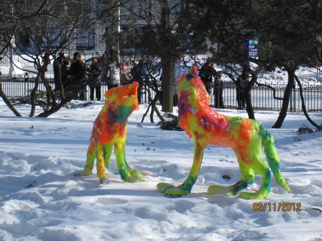 Winterlude, Ottawa Ottawa, Ontario Canada