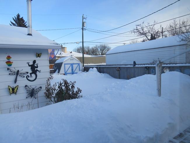 no place to put the snow Brandon, Manitoba Canada