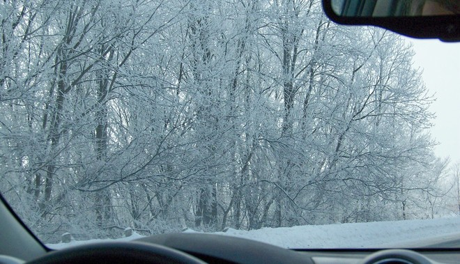Frosty Morning Fenelon Falls, Ontario Canada