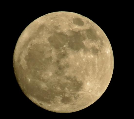 7pm Moon at Edmonton Edmonton, Alberta Canada