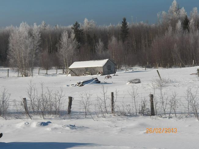 Calm after freezing rain Acadieville, New Brunswick Canada