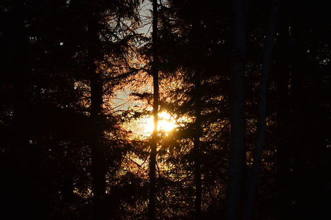 Sunrise Glovertown, Newfoundland and Labrador Canada