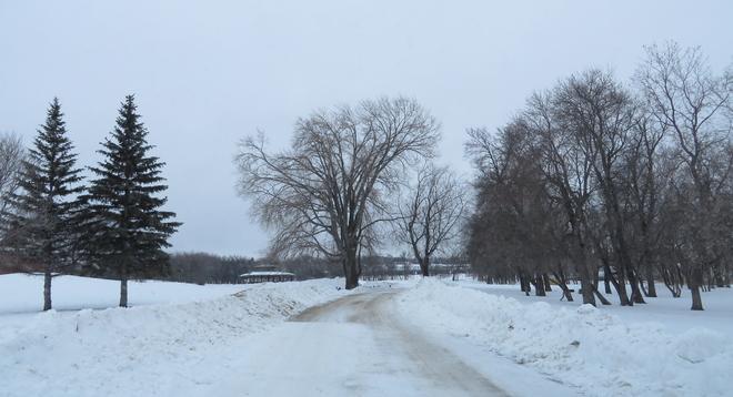 Winter Days Brandon, Manitoba Canada