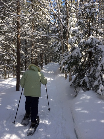 Vive l'hiver !!! La Malbaie, Québec Canada