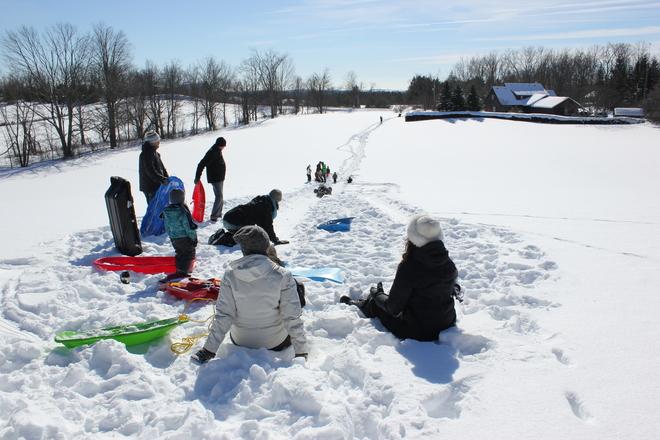 Sledding! Puslinch, Ontario Canada