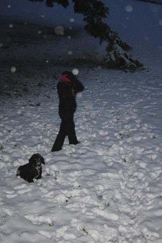 Winter North Saanich, British Columbia Canada
