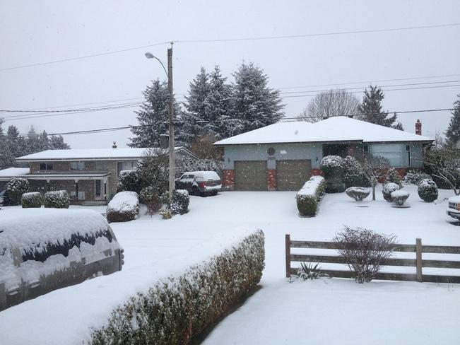 Snow Day Abbotsford, British Columbia Canada