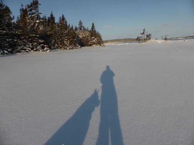 Our Shadows Birchy Bay, Newfoundland and Labrador Canada