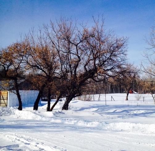nice landscape Debden, Saskatchewan Canada