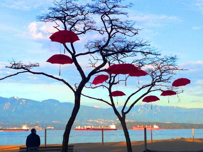 Stunning Winter View Vancouver, British Columbia Canada