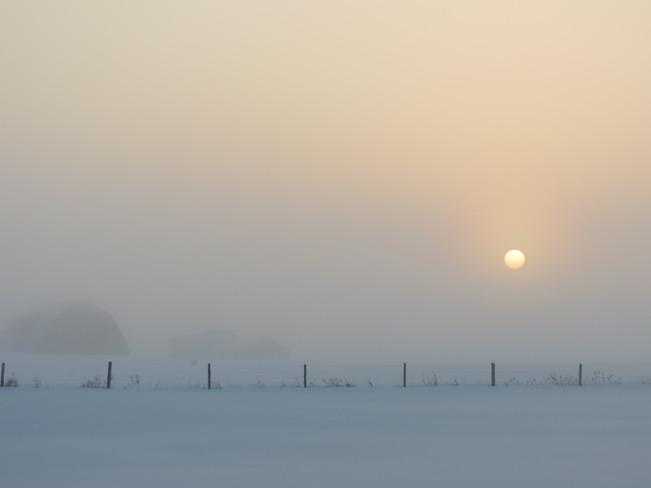 Foggy Sunrise Lindsay, Ontario Canada
