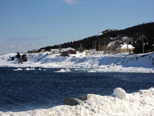 Winter Scenery Carbonear, Newfoundland and Labrador Canada