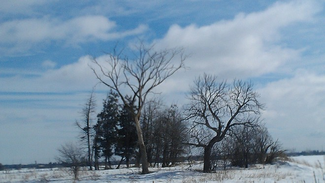WHITE EARTH AND BLUE SKY Brampton, Ontario Canada