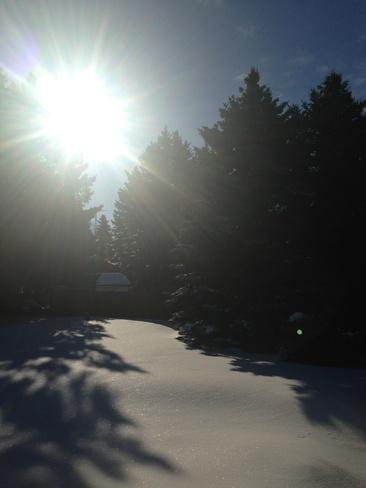 Sunny morning Treherne, Manitoba Canada