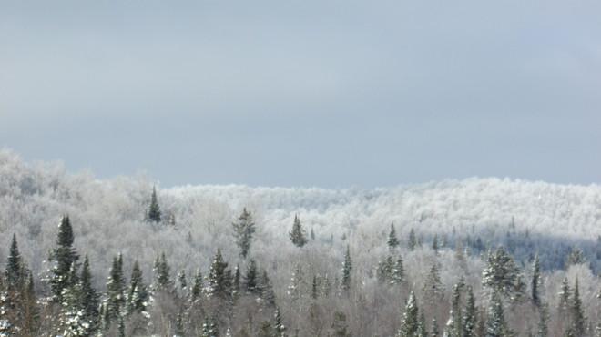 Just a dusting of snow Saint-Donat, Quebec Canada