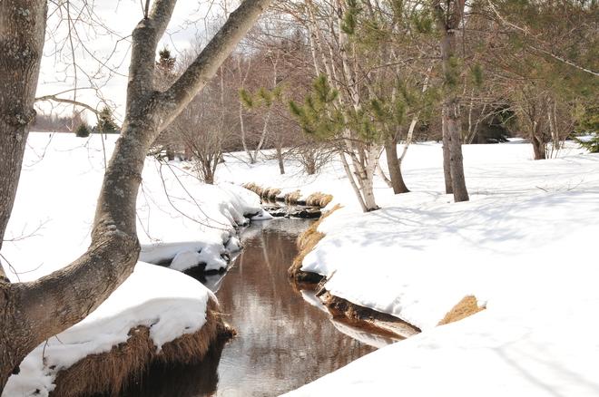 Spring is on the way. Shediac, New Brunswick Canada