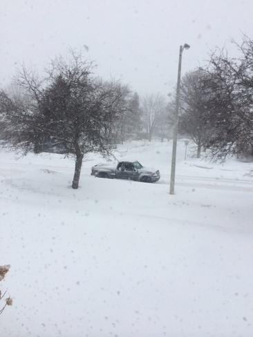 More Snow Kitchener, Ontario Canada