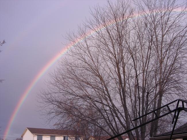 Rainbow in Niagara Falls Niagara Falls, Ontario Canada