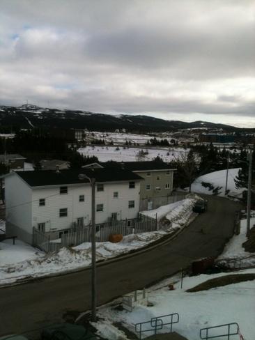 looks like snow Marystown, Newfoundland and Labrador Canada