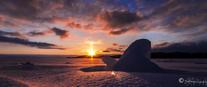 Golden icy sea ! Stephenville, Newfoundland and Labrador Canada