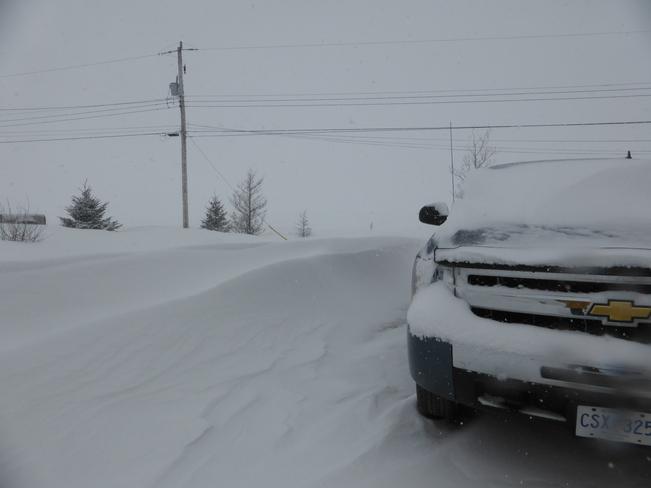 Snow Drift Birchy Bay, Newfoundland and Labrador Canada