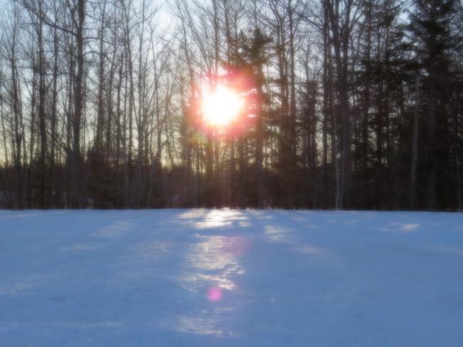 nice winter day