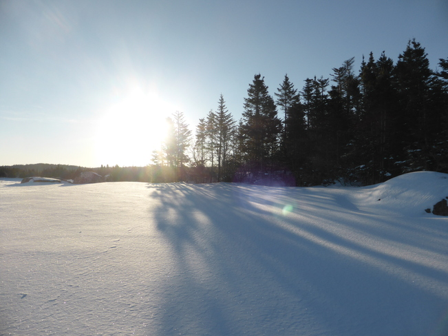 Sunny Morning Birchy Bay, Newfoundland and Labrador Canada