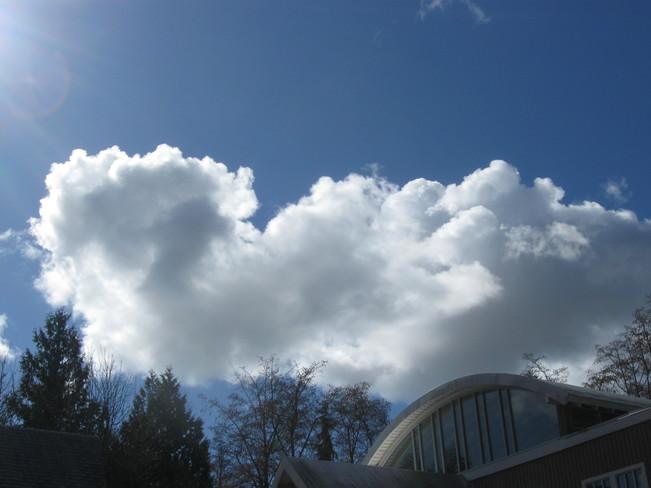 cloud doing the back stroke Surrey, British Columbia Canada