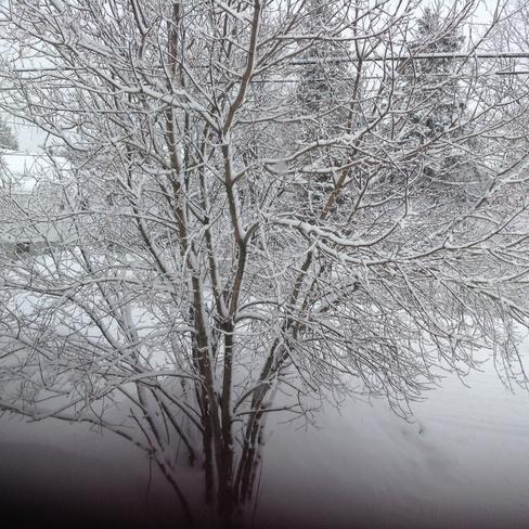 Winter wonderland Sudbury, Ontario Canada