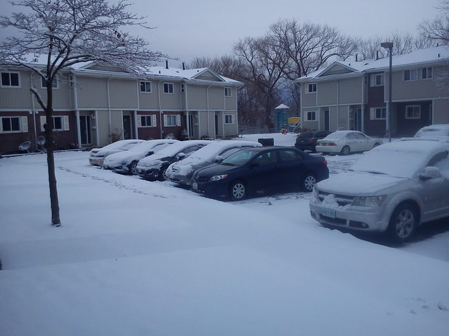 Go Away Winter St. Catharines, Ontario Canada