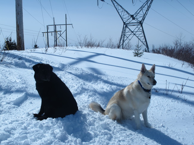 Rest time... Deer Lake, Newfoundland and Labrador Canada