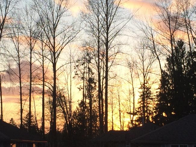 Sunset Maple Ridge, British Columbia Canada