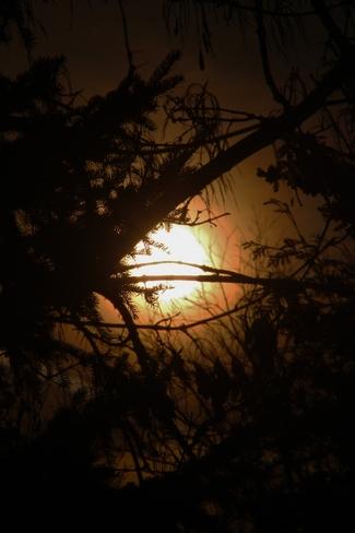 silhouette sunset Seaforth, Ontario Canada