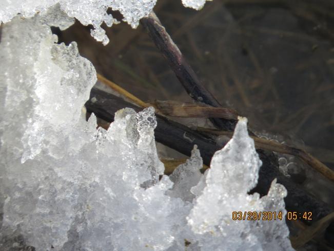 ice art Wilson, Alberta Canada