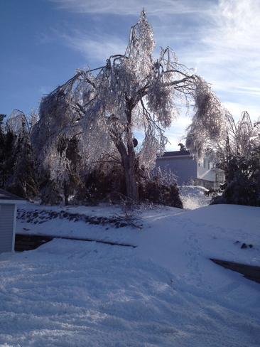 Ice Storm 2014 Louisbourg, Nova Scotia Canada