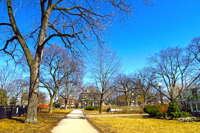 Spring is here Toronto, Ontario Canada