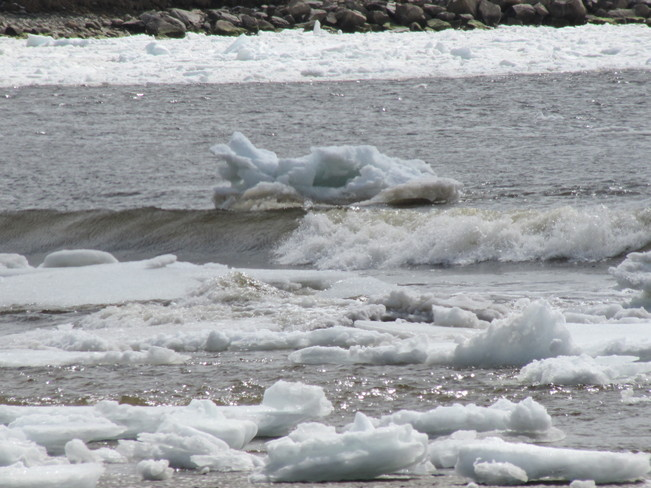 Gulf Ice in Port Hilford Bay, NS Sherbrooke, Nova Scotia Canada