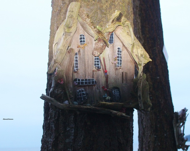 Turning Out Lights On Birds B&B Sechelt, British Columbia Canada